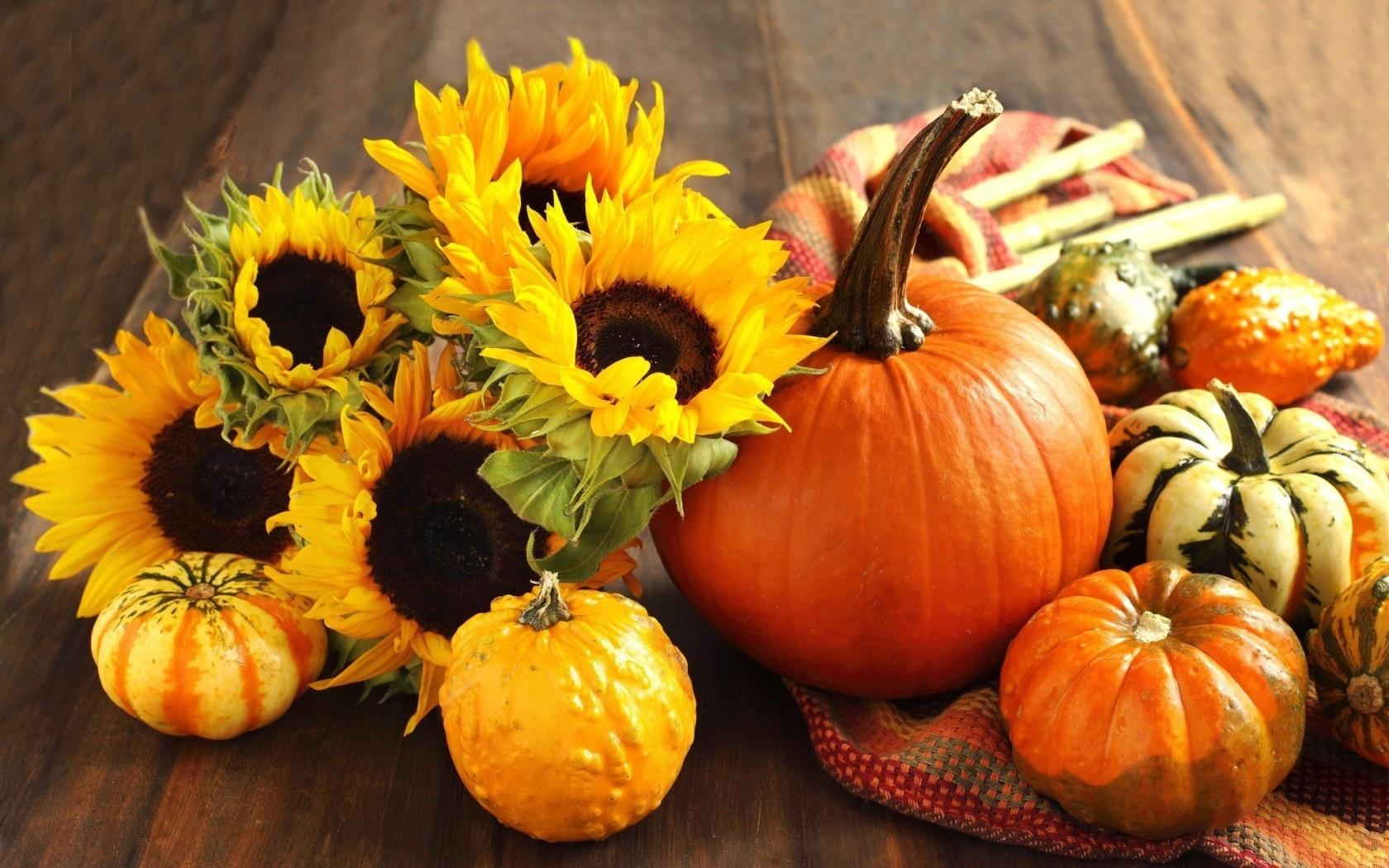 wallpaper autumn pumpkin sunflower harvest still life desktop - Fall Pumpkins