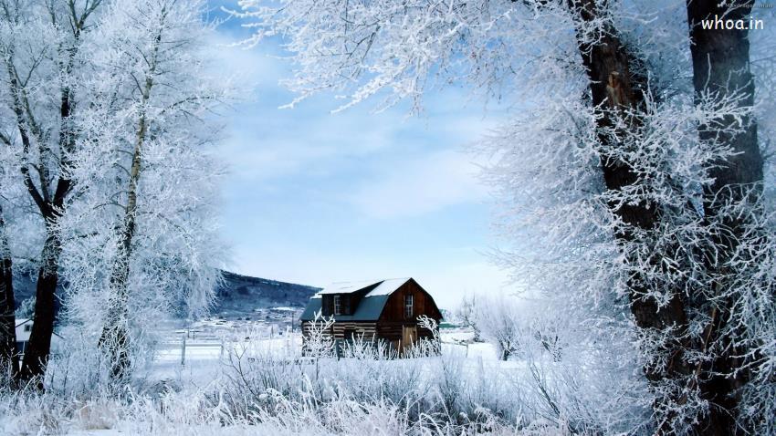 Source URL httpwwwwhoaingallerynatural hd snow fall wallpaper 850x478