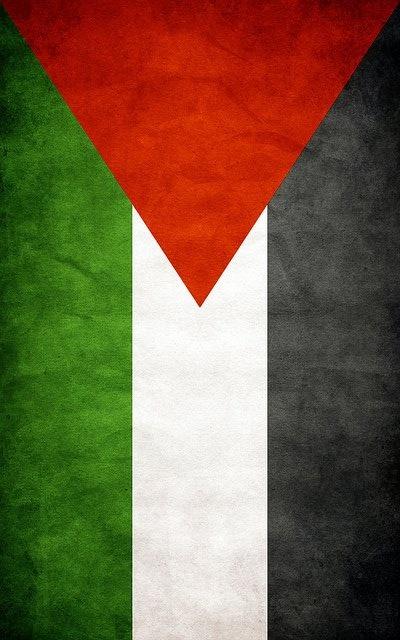 Palestine Flag Palestine Pinterest 400x640
