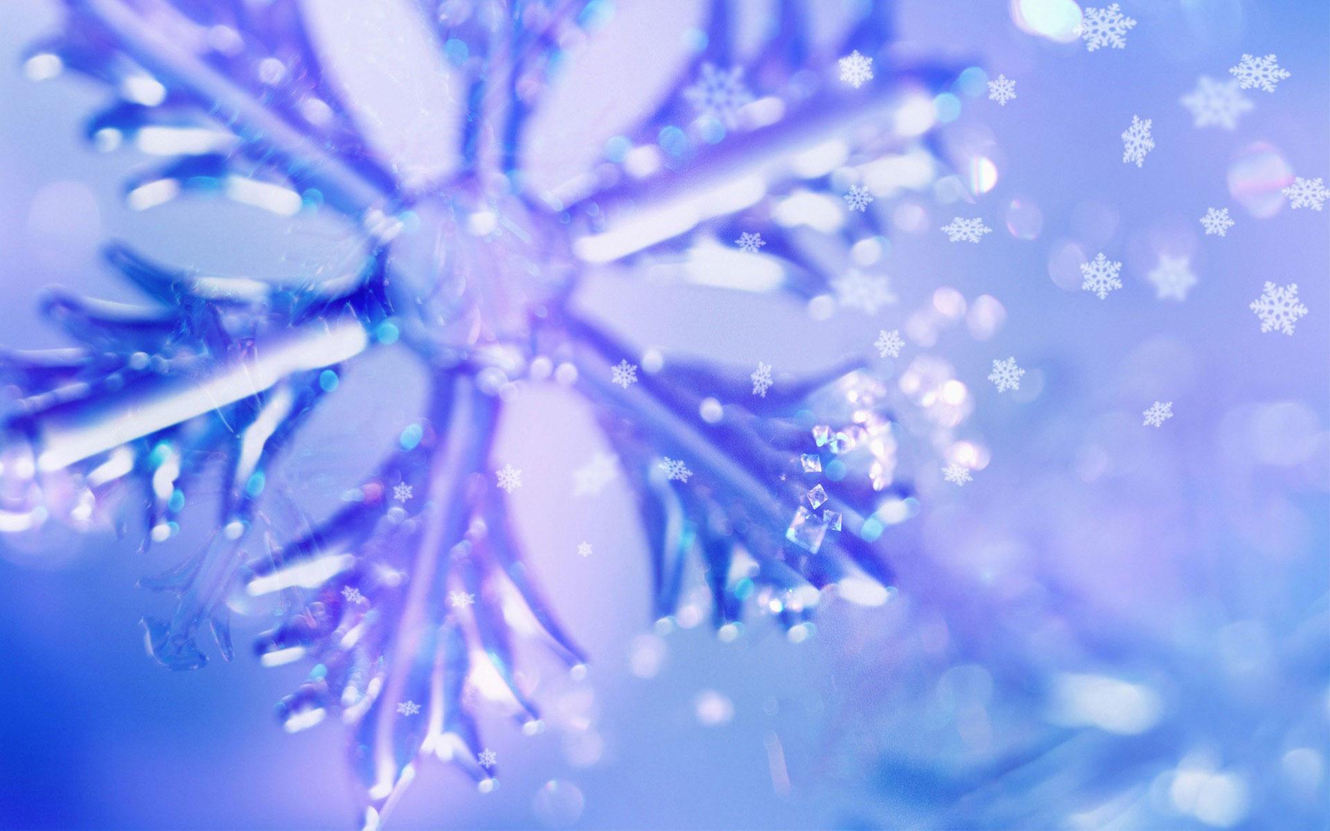 Winter Wallpaper 9 Picture 1920x1200