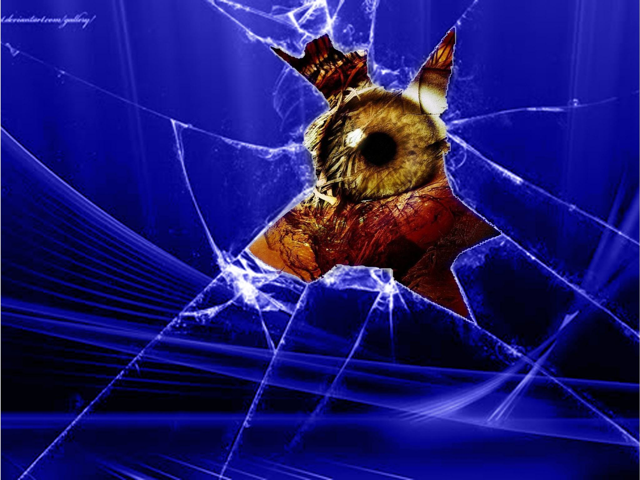Wallpapers Backgrounds   scary eye iPad Wallpaper 2048x1536 resolution 2048x1536