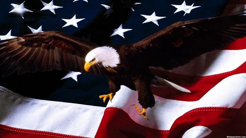HD American Flag Eagle Wallpaper Download   140762 800x450