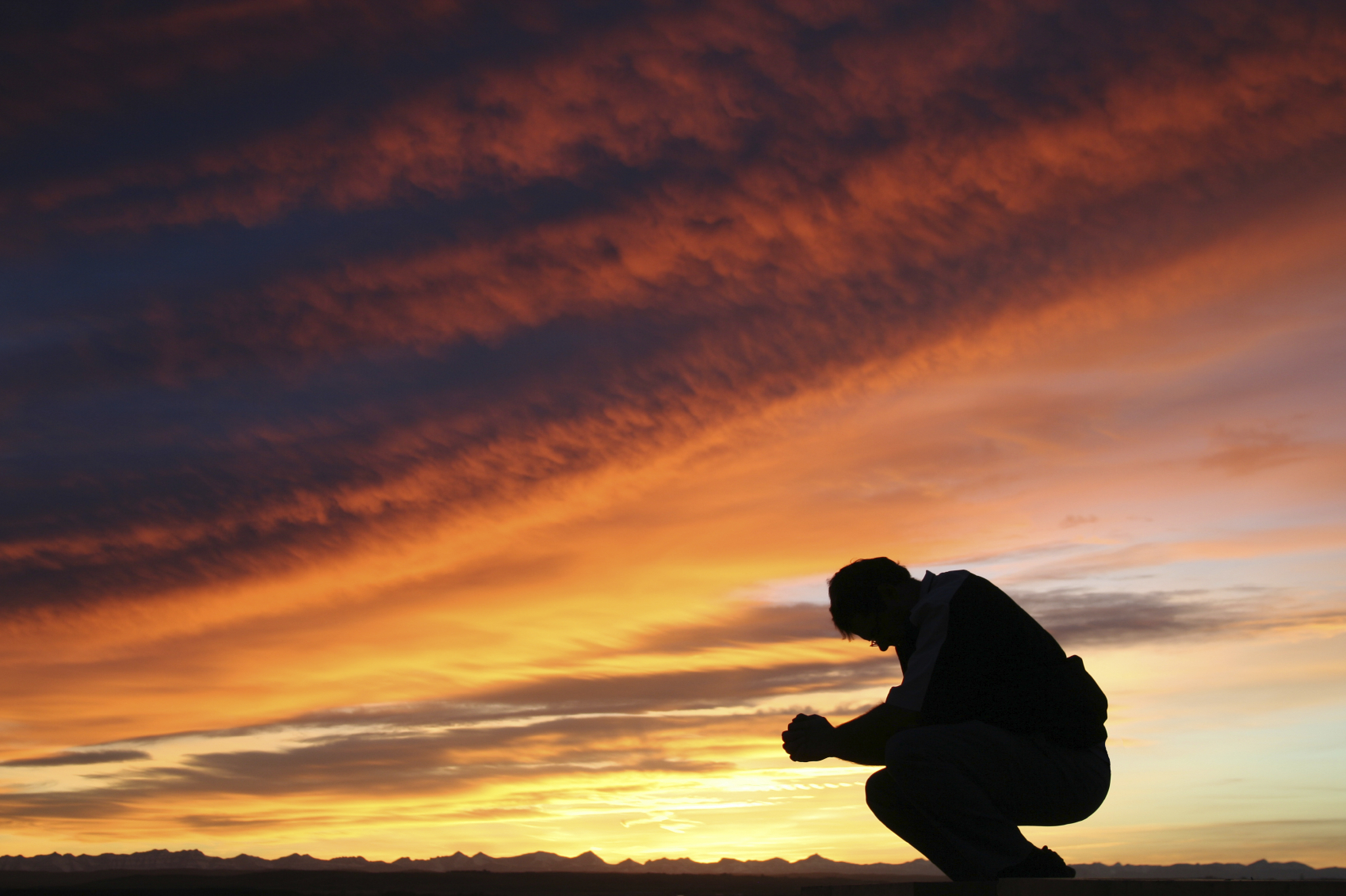 Sow and Reap Power in Praise Sheri Salatin 1698x1131