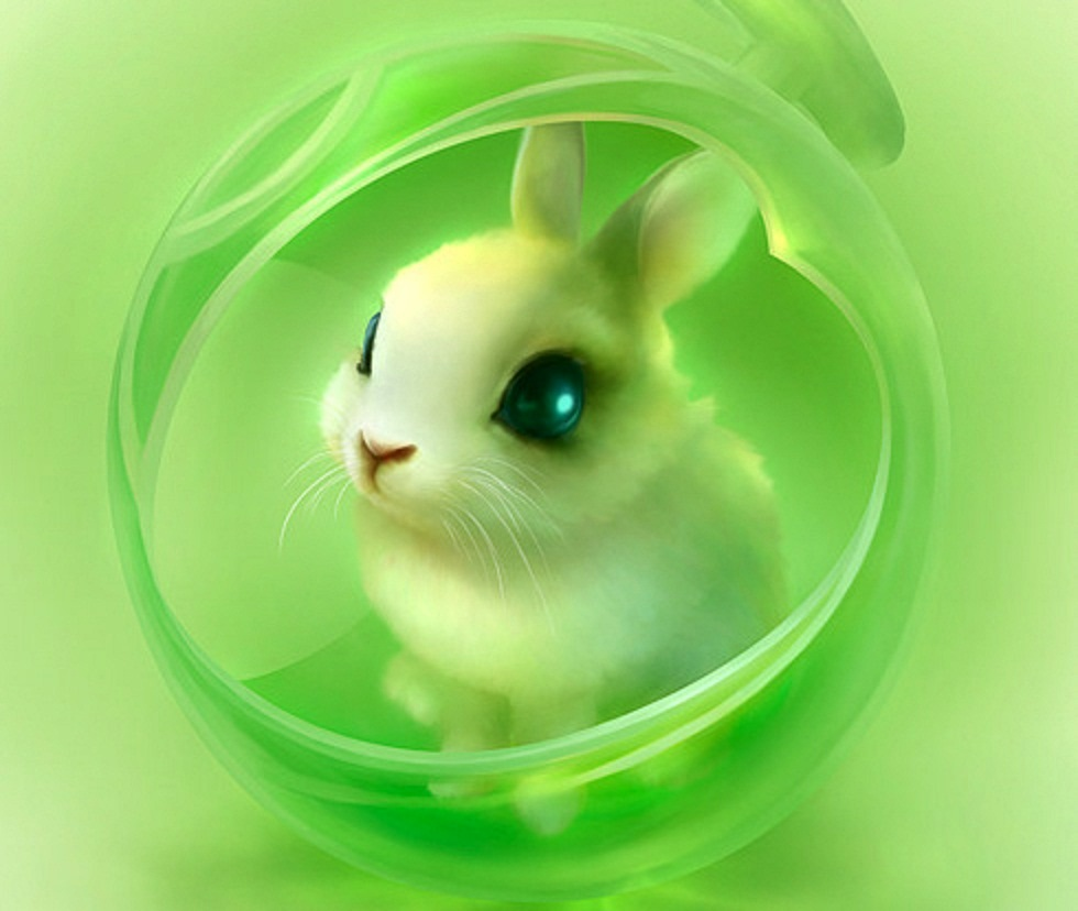 64 Cute Bunnies Wallpaper On Wallpapersafari