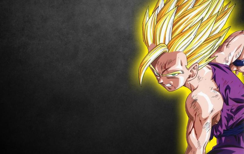 gohan son gohan dragon ball z 1900x1200 wallpaper Anime Dragonball HD 800x505