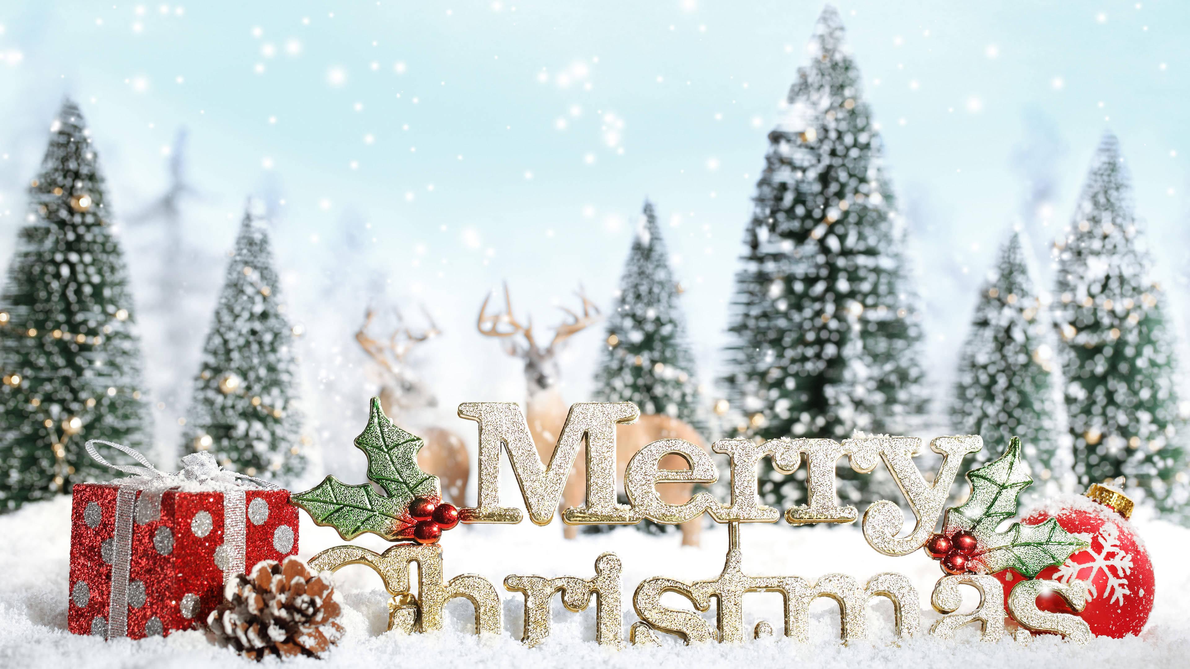 Merry Christmas Text UHD 4K Wallpaper Pixelz 3840x2160