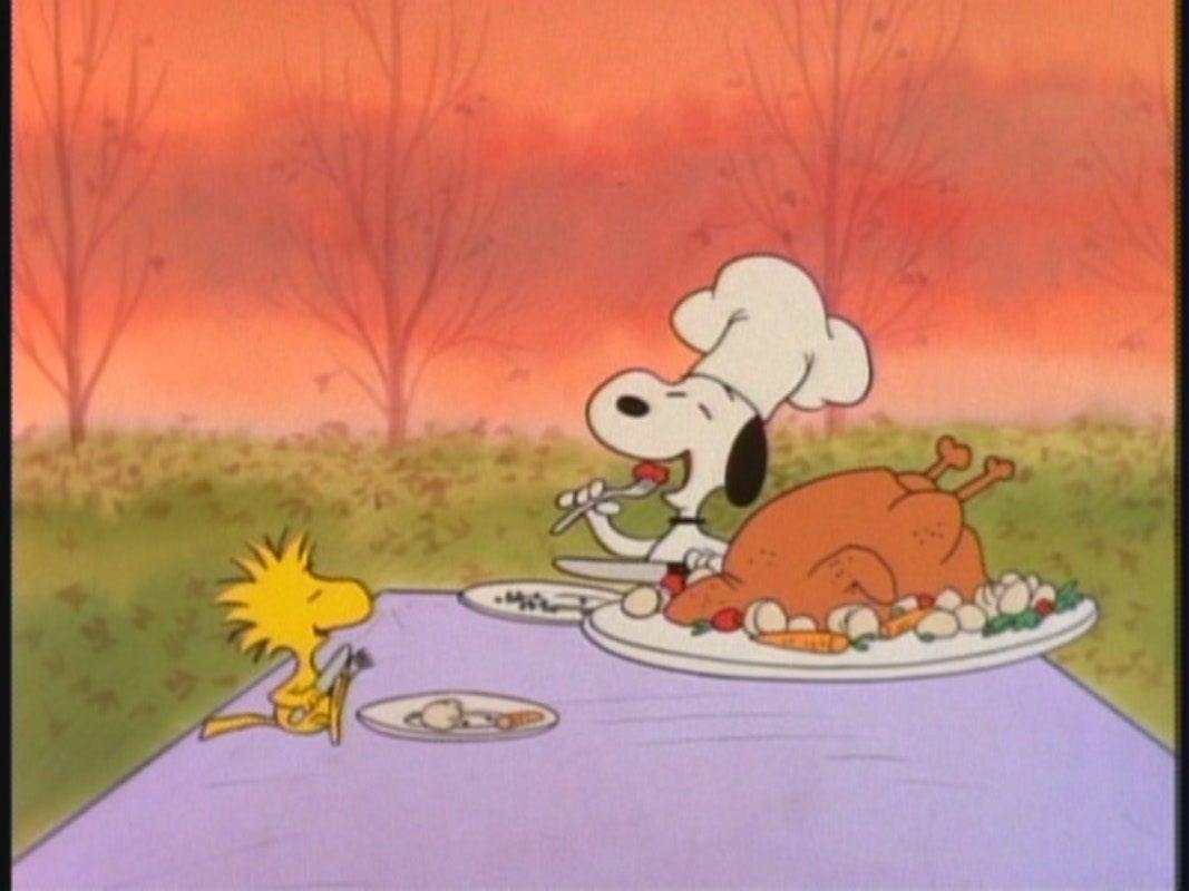 Charlie Brown Thanksgiving   Peanuts Image 26555427 1067x800