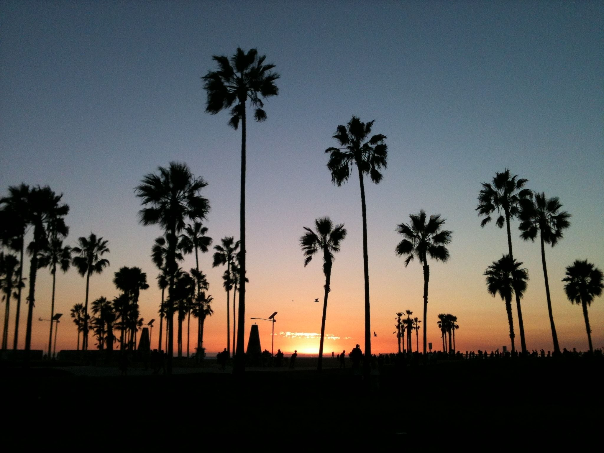60 Venice Beach Sunset Wallpapers   Download at WallpaperBro 2048x1536