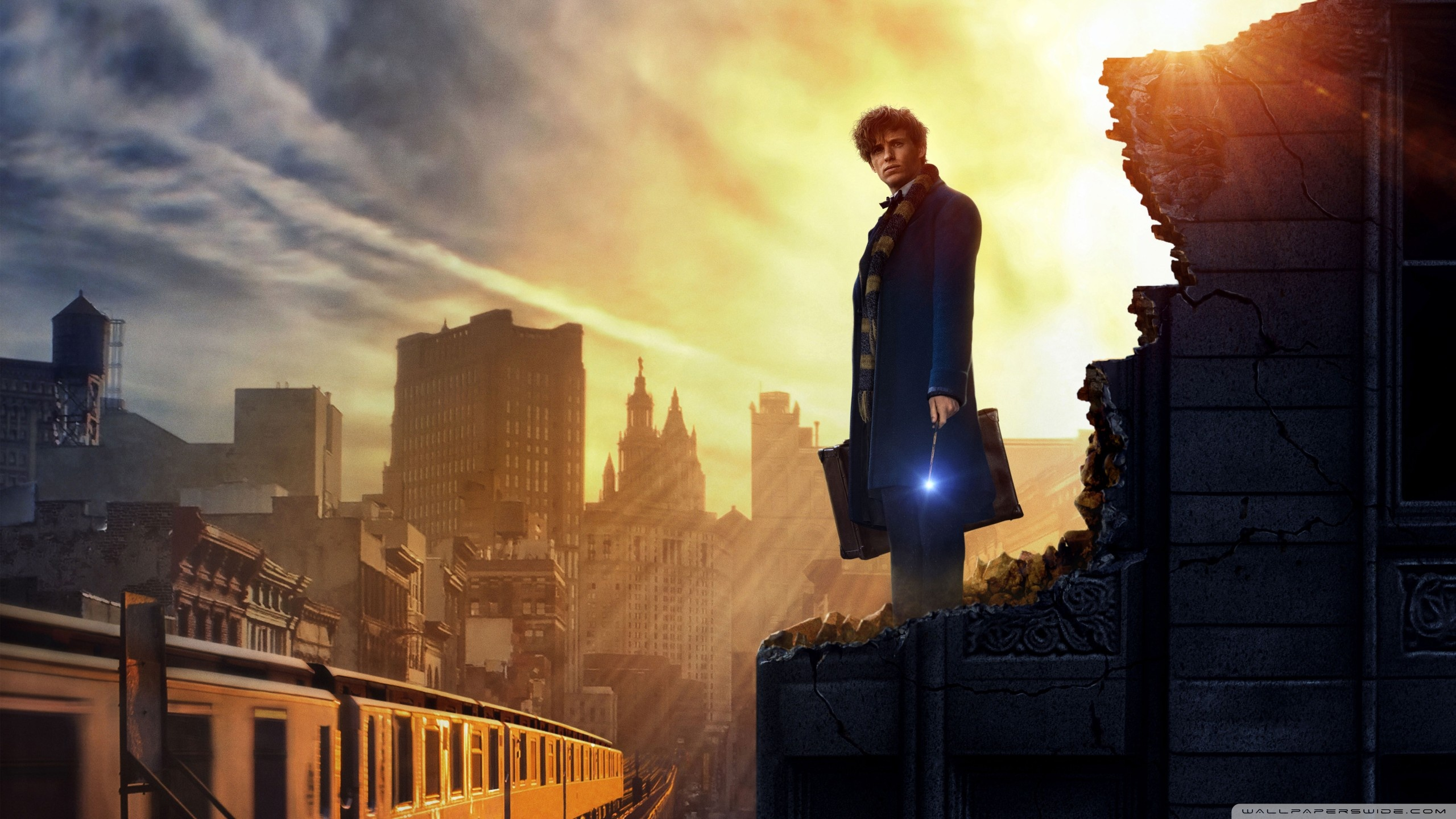 Fantastic Beasts and Where to Find Them 4K HD Desktop Wallpaper 2560x1440