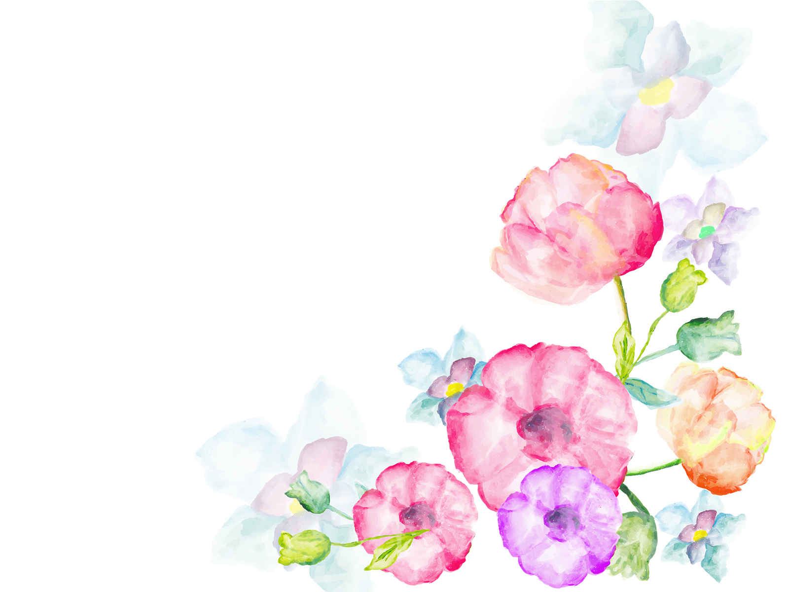 Free Download Watercolor Flowers Greetings Backgrounds Flowers