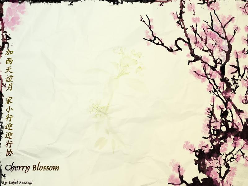 Wallpaper Sea cherry blossom background 800x600