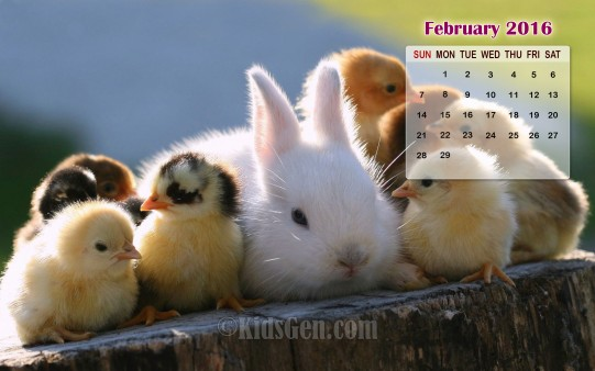 February Calendar Wallpaper 2016   Kidsgen Wallpaper 541x338