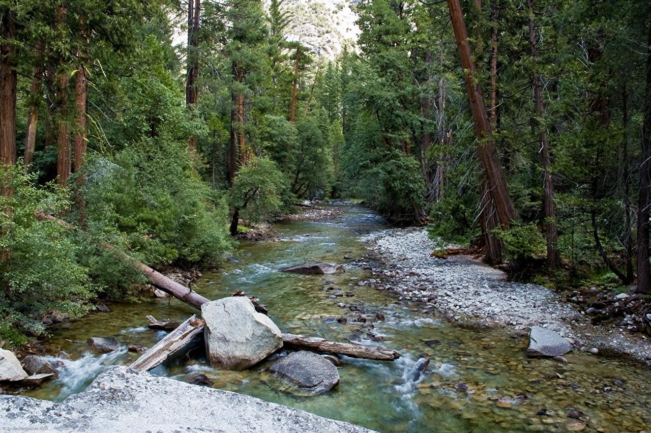 Photos Kings Canyon National Park [USA California] Nature Parks 1280x851