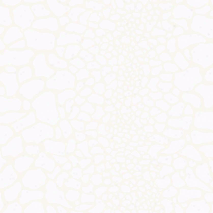 Giraffe Print White Pearl Wallpaper 837x837