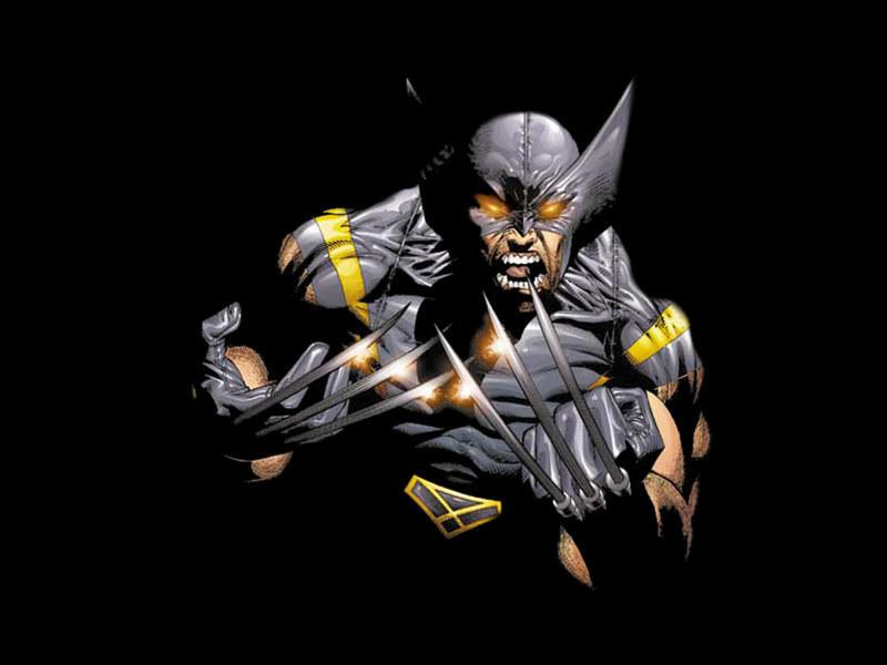Wolverine HD desktop wallpaperXMen Wallpapers Wolverine wallpapers 800x600