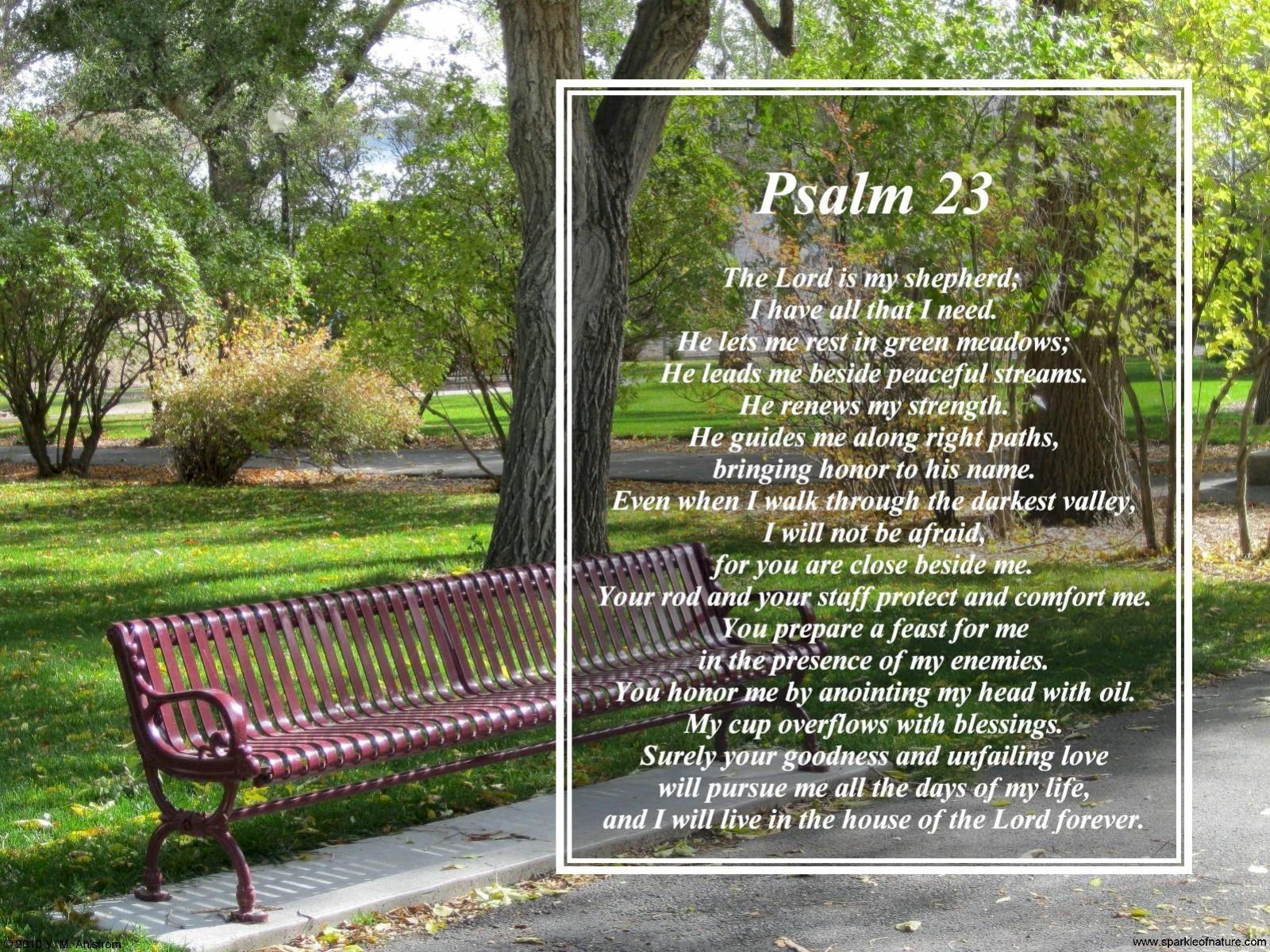 Desktop Wallpapers   Religious Inspirational   6756 Psalm 23 1600x1200