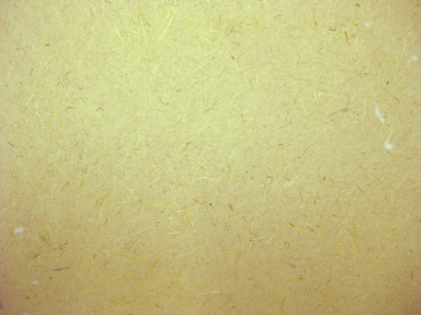 Plain Backgrounds 600x450
