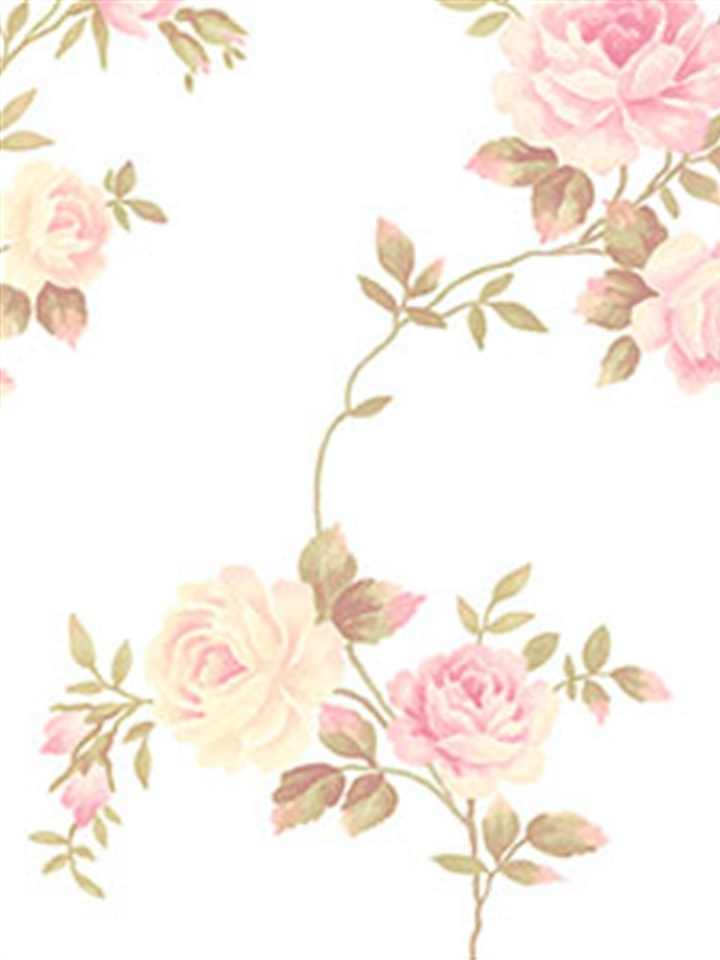 Backgrounds Pinterest Roses Garden Wallpapers And Shabby Chic 720x960