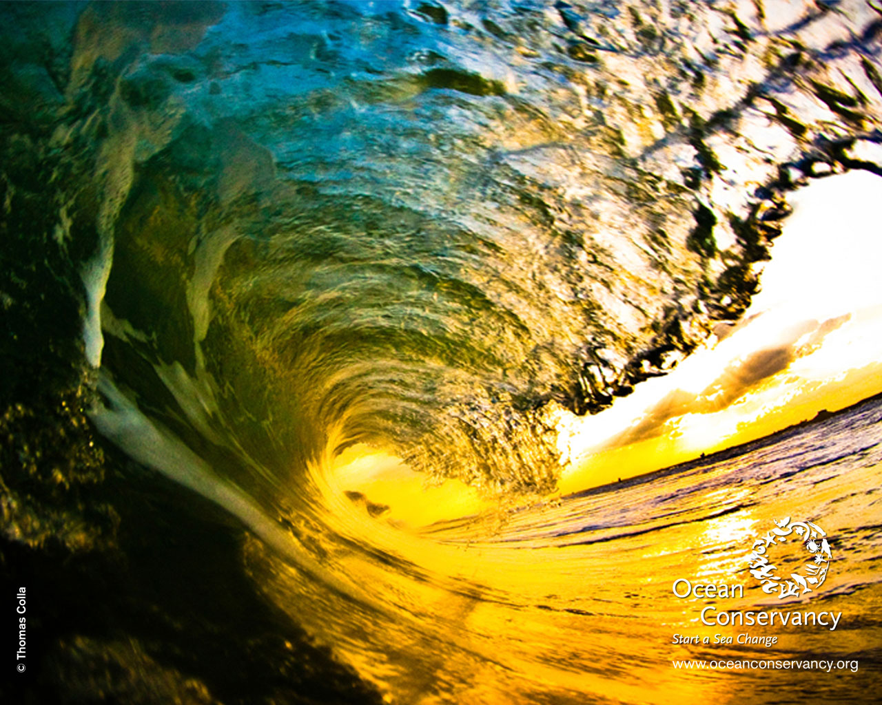 Wave desktop wallpaper wallpapersafari - Ocean pictures for desktop background ...