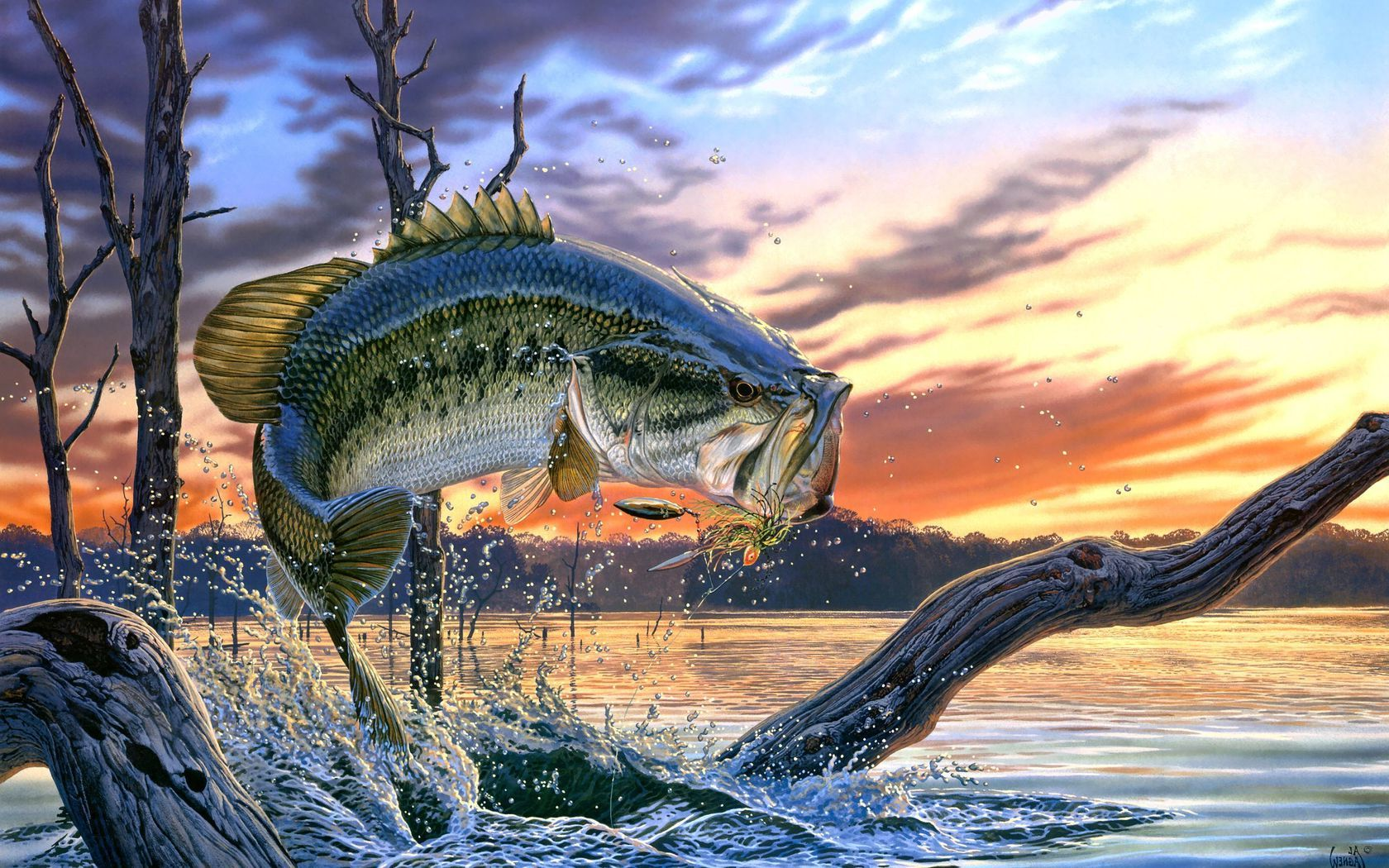 largemouth bass fishing wallpaper screensaver   flipped Images 1680x1050