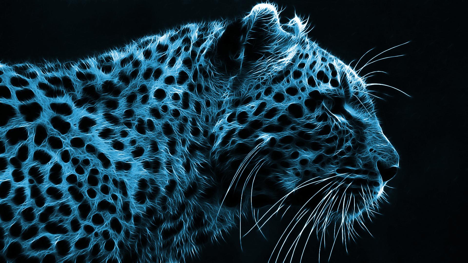 Pin Blue Cheetah Wallpapers 30978 1920x1080