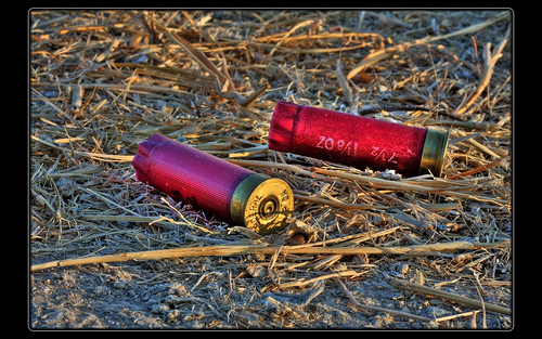 shotgun shell background - photo #6