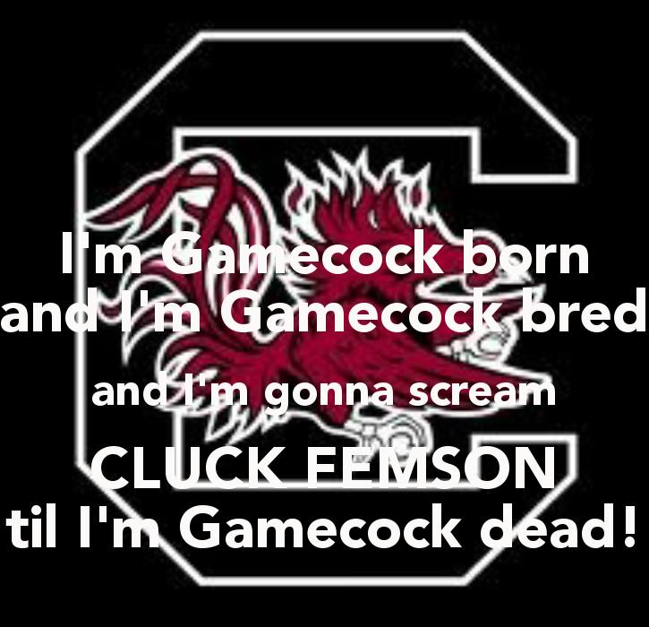 Gamecock Wallpaper Im gamecock born and im 725x700