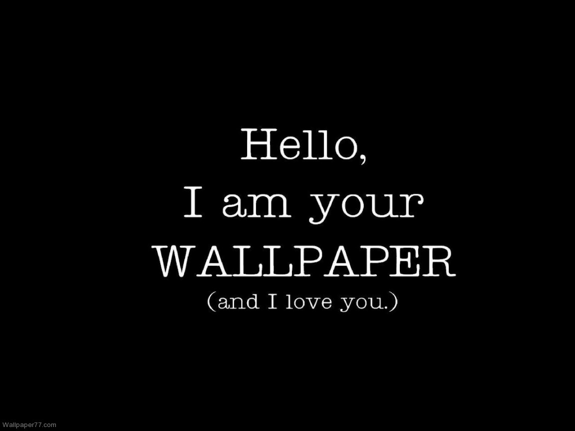 Download Funny Wallpaper Quotes HD Wallpaper 4982 Full Size 1152x864