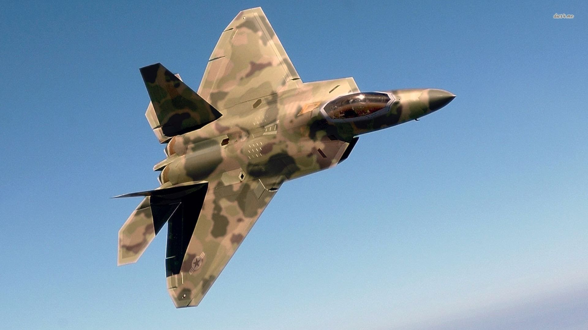 MARTIN F 22 RAPTOR IN ACTION 2014 HD 1920x1080