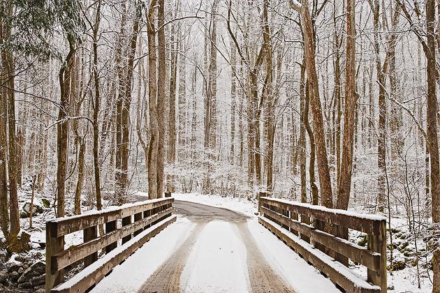 Winter Screensaver from William Britten Photography 630x420