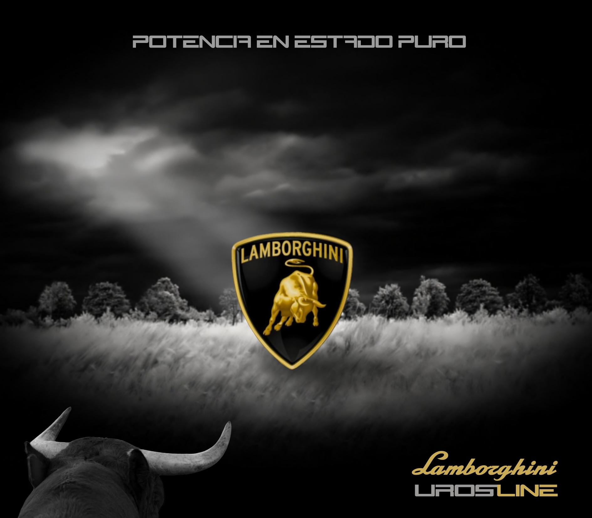 Lamborghini logo wallpaper wallpapersafari - Lamborghini symbol wallpaper ...