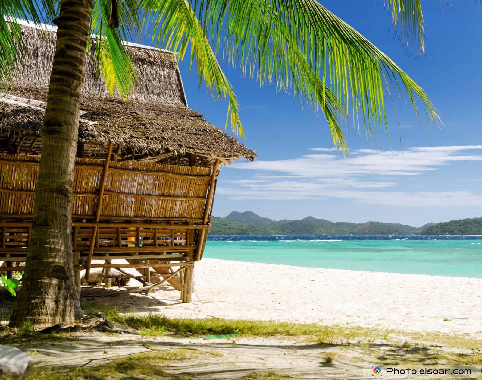 Tropical Beach Huts: Caribbean Beach Hut Wallpaper