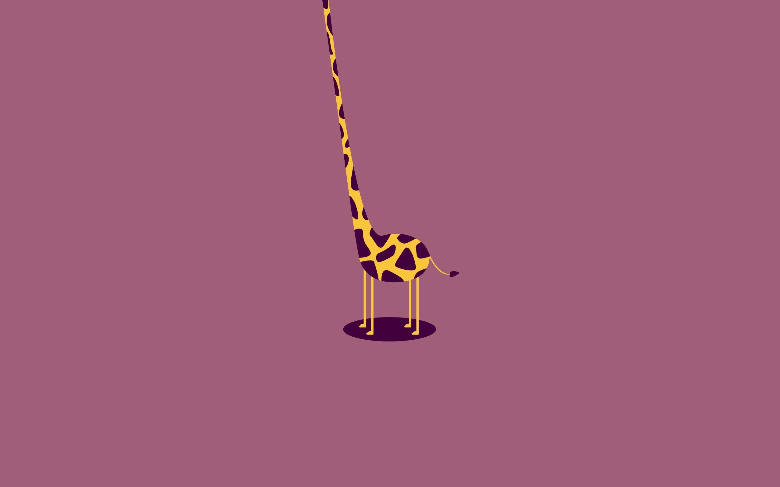 Cute Giraffe Wallpaper 2560x1600