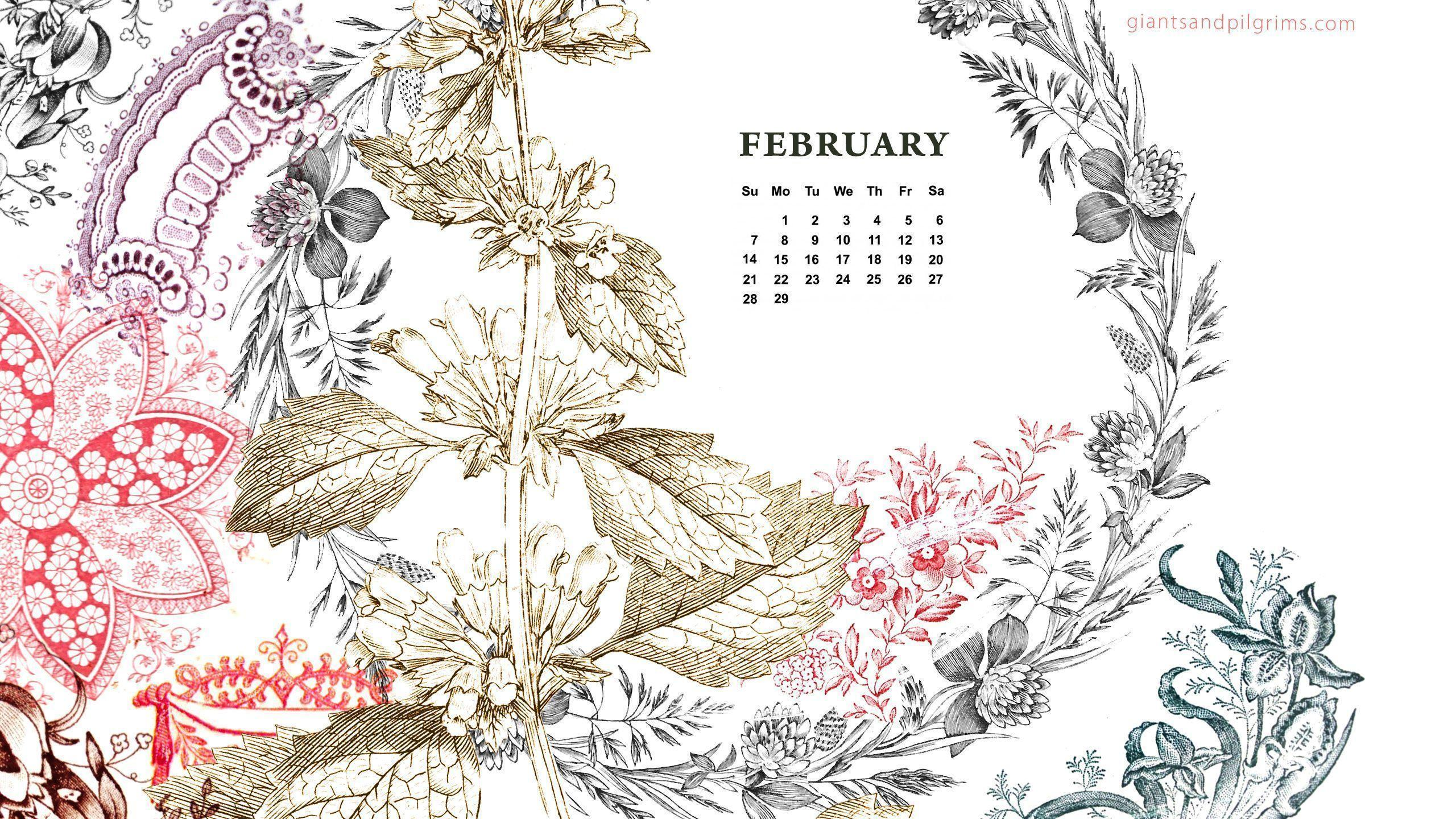 Desktop Wallpapers Calendar February 2016 2560x1440