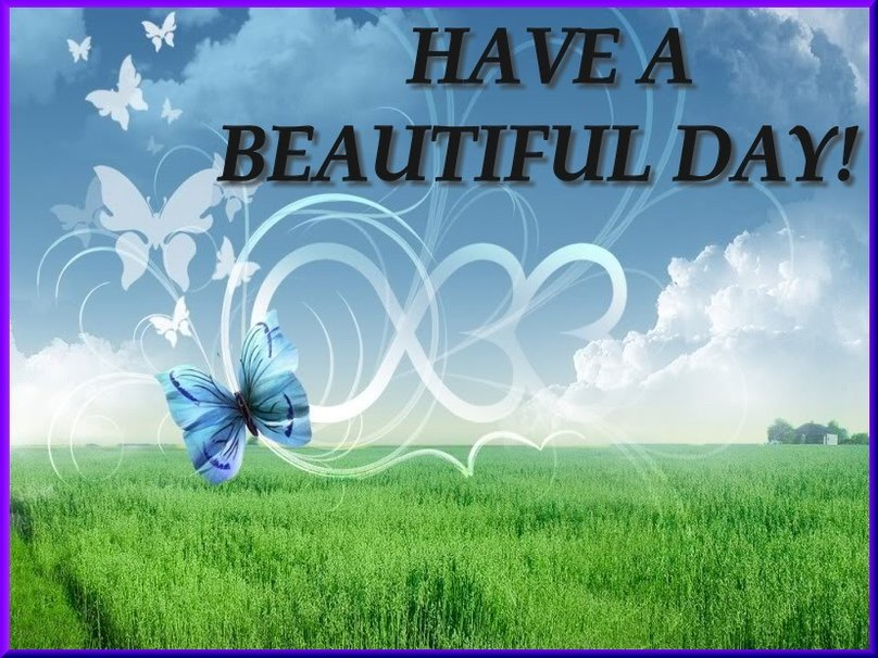 HAVE A BEAUTIFUL DAY wallpaper   ForWallpapercom 808x606