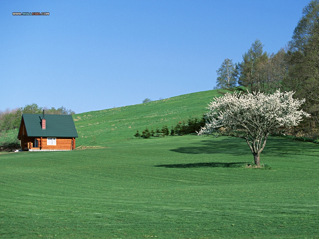 Farm Scene photography 1024x768 NO13 Desktop Wallpaper   Wallcoonet 1024x768