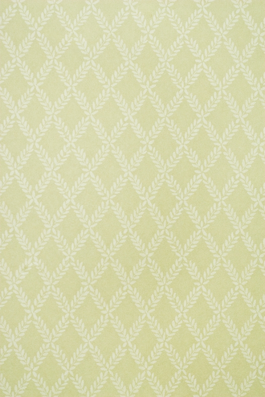 Pale Olive Wallpaper Small Design Trellis Wallpaper 534x801