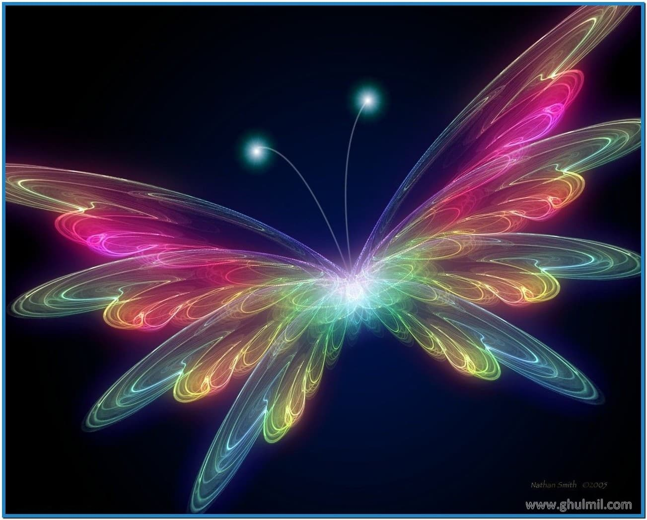 Animated butterfly screensavers   Download 1303x1047