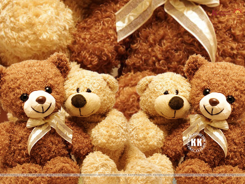 Teddy Bear Colour wallpapers Teddy Bear download desktop Cute Teddy 800x600