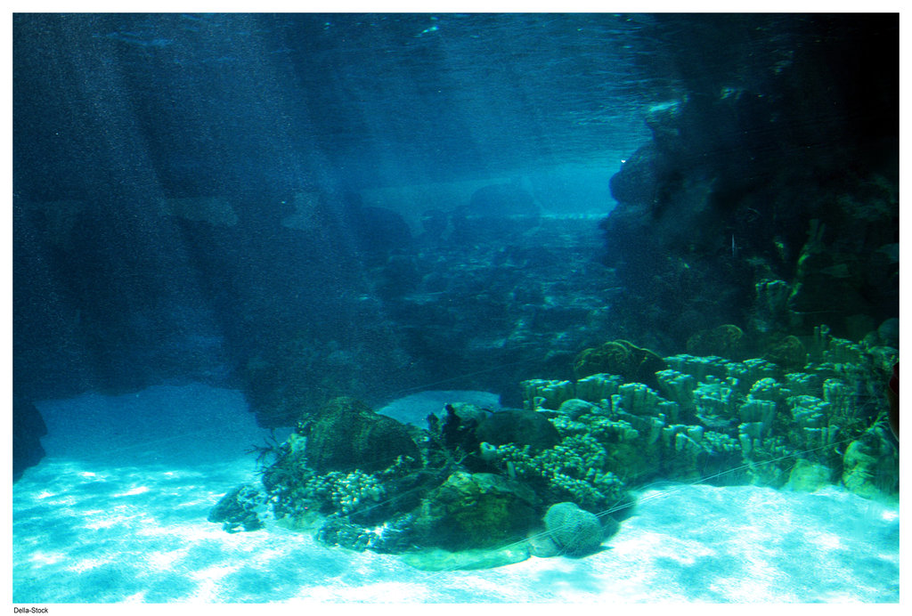 Underwater Ocean Floor Light by Della-Stock on DeviantArt