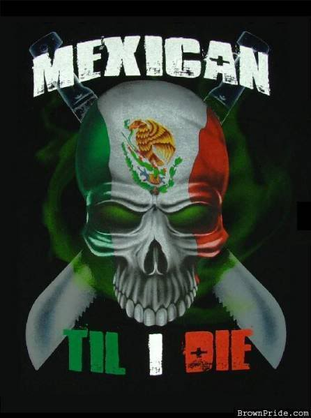 Cool Mexican Wallpapers Mexican till i die 446x599