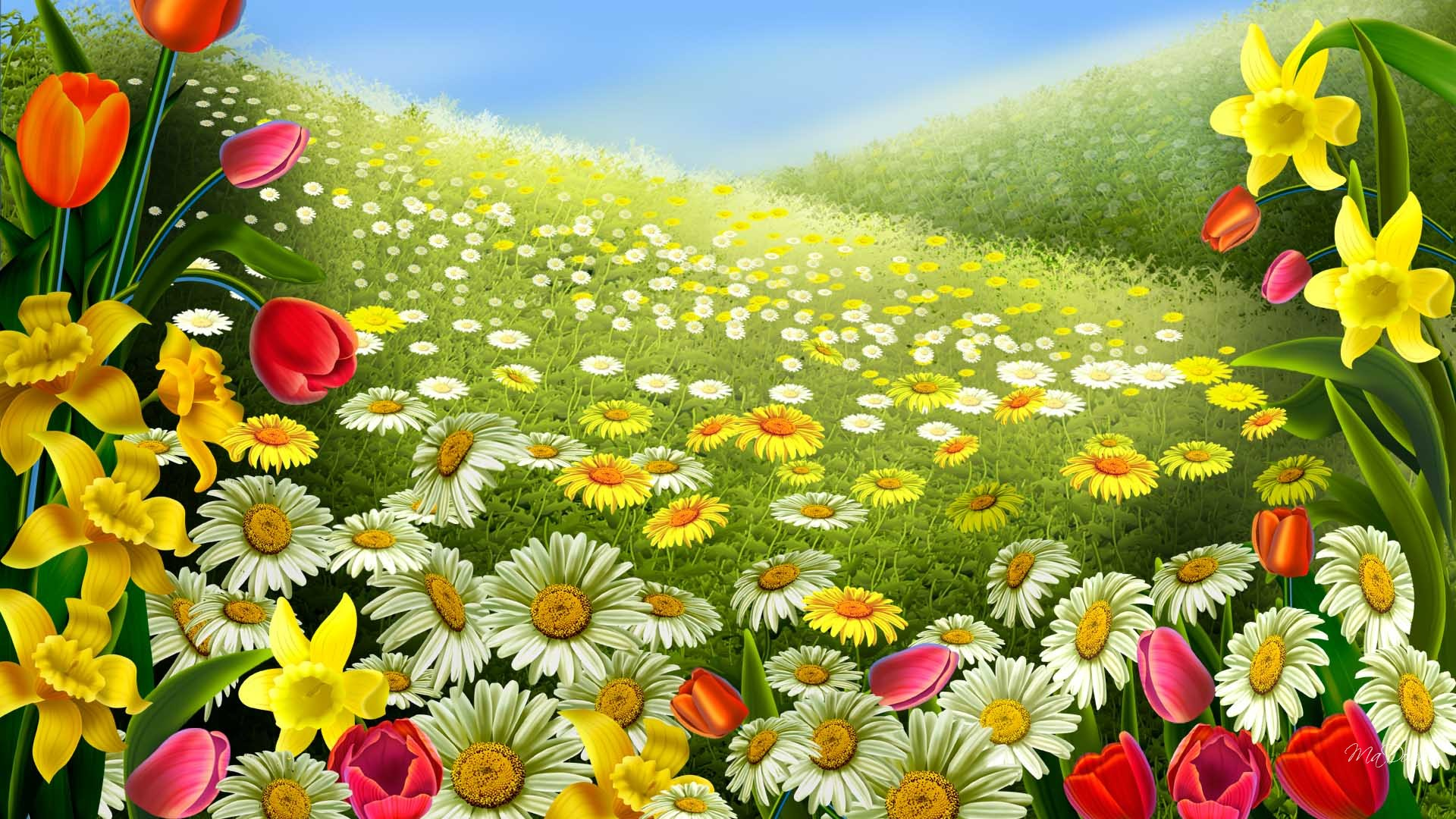 Pics Photos   For Desktop Download Spring Flowers 1920x1080