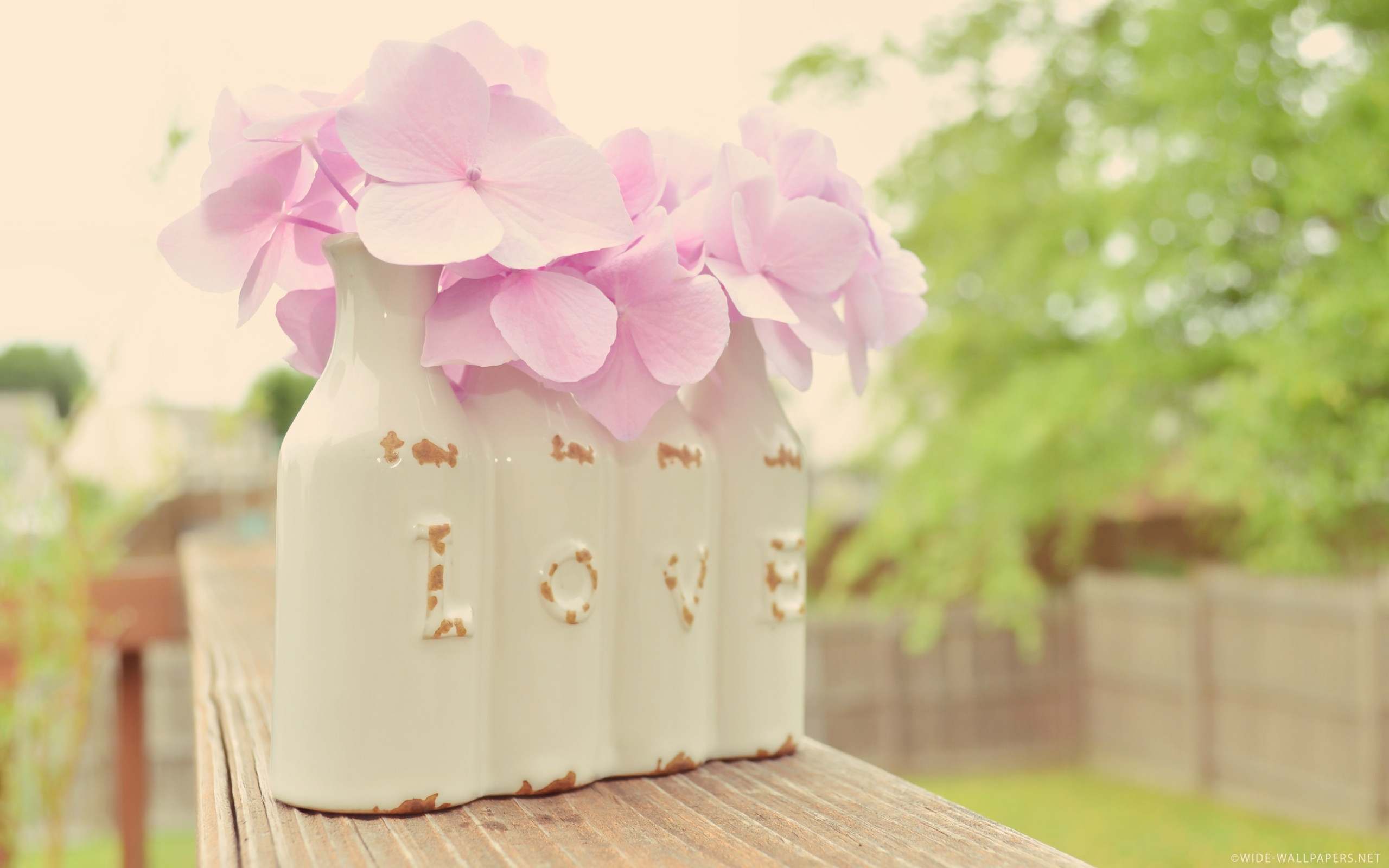 LOVE is in the Air Vintage Vase Hydrangea widescreen wallpaper 2560x1600