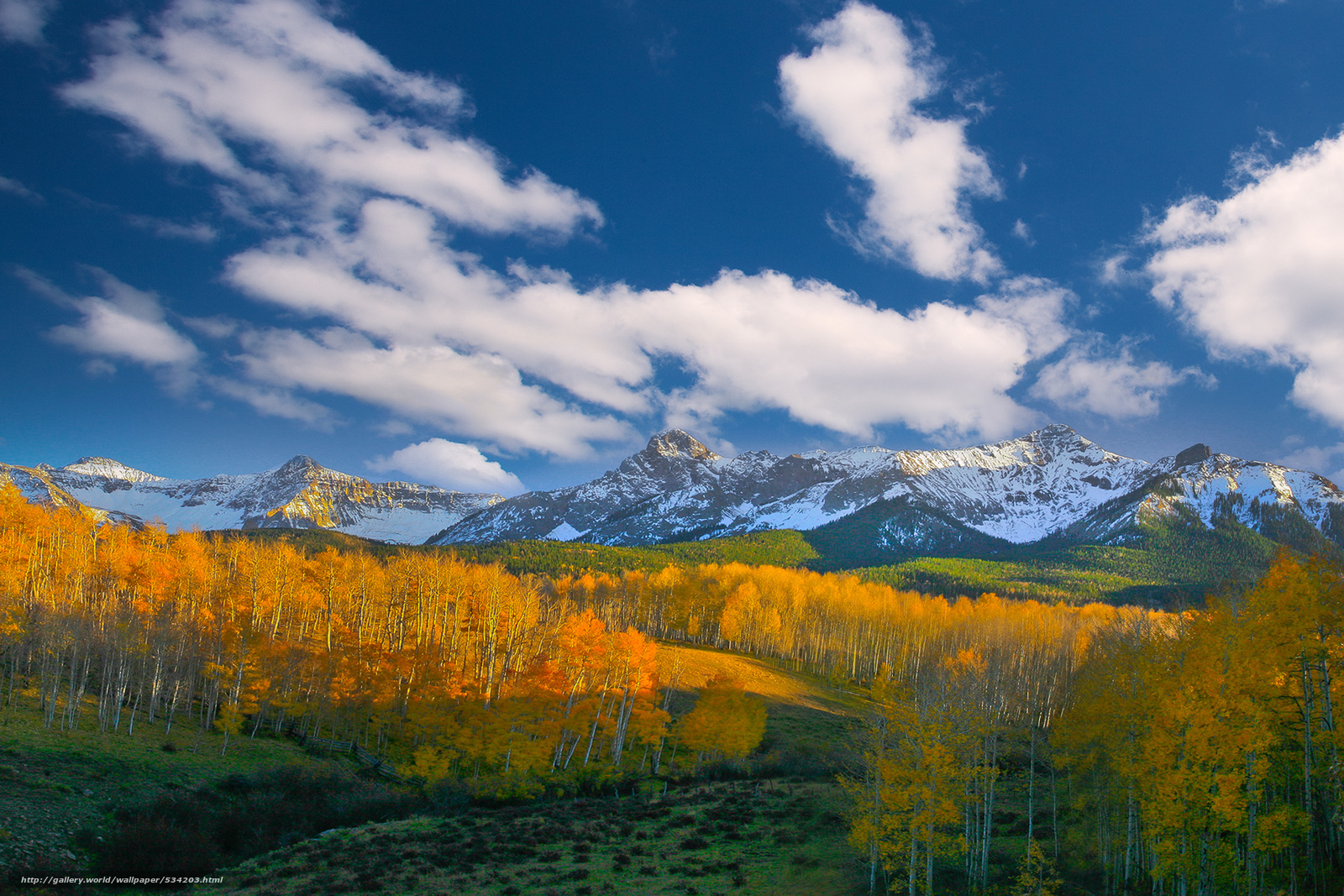 Download wallpaper color valley fall forest autumn colorado 1600x1067