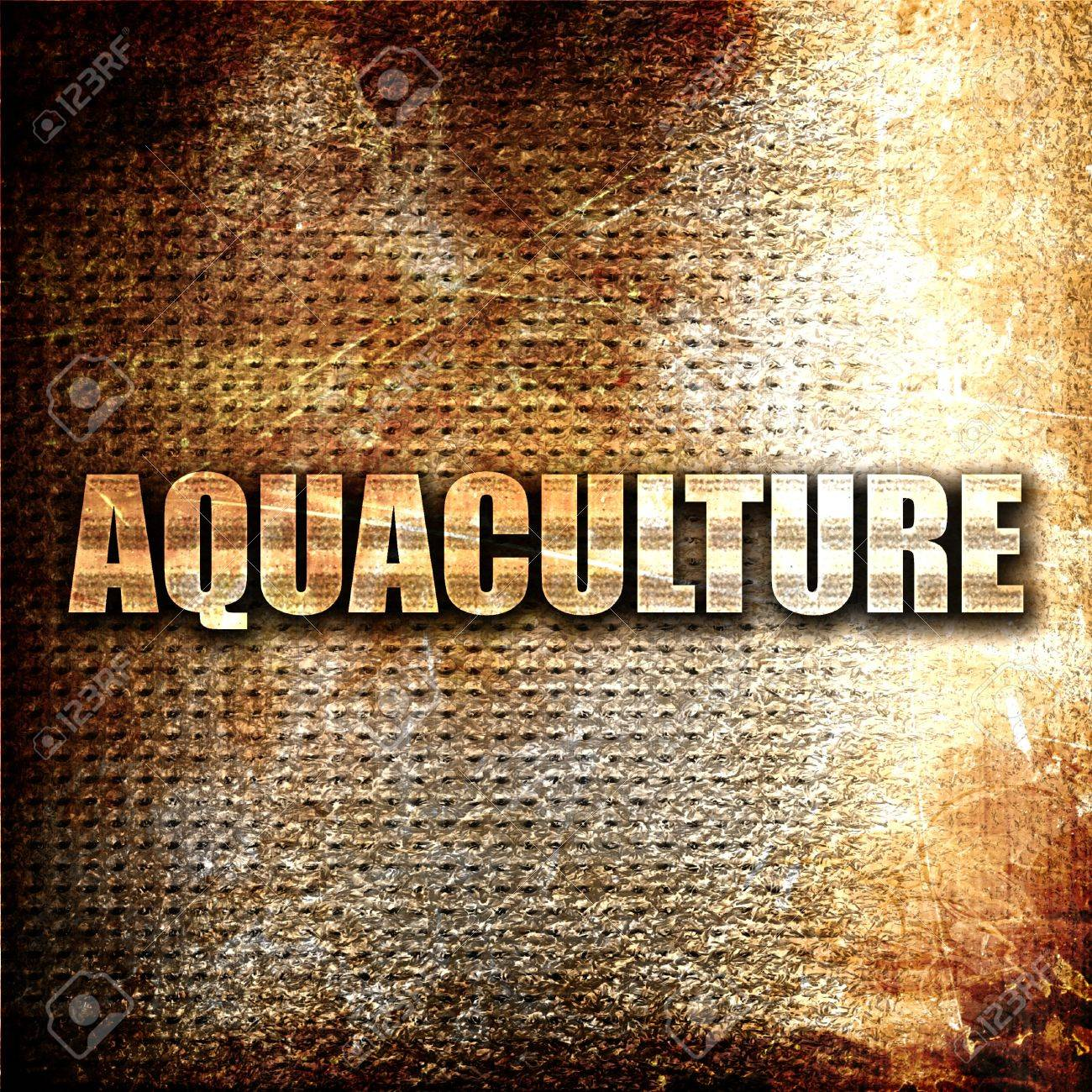 Aquaculture 3D Rendering Metal Text On Rust Background Stock 1300x1300
