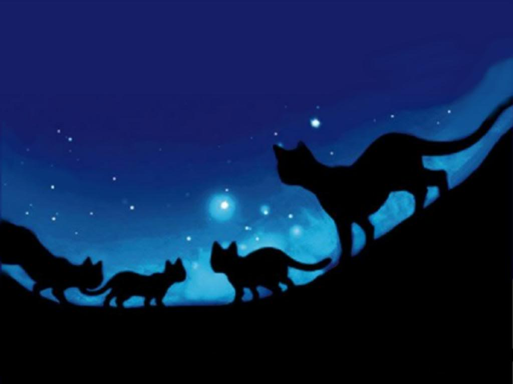 Warrior Cats Wallpapers   Top Warrior Cats Backgrounds 1024x768