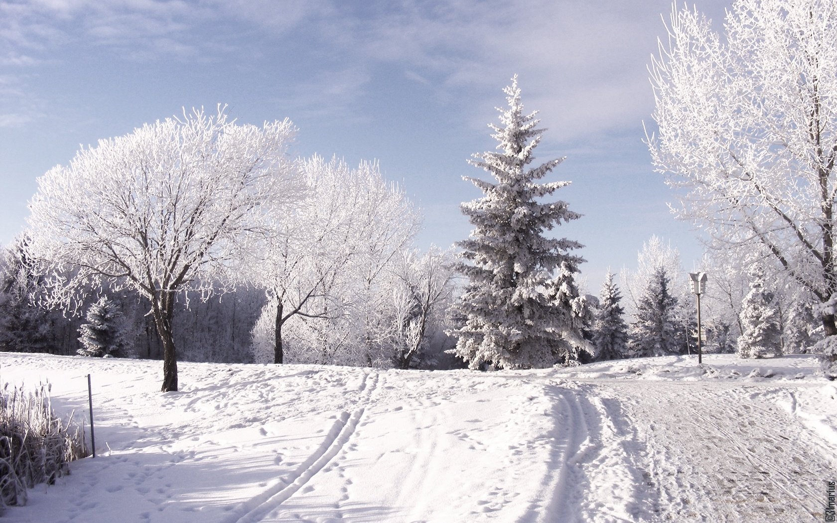 Winter HD Wallpapers Pictures Images Backgrounds Photos 1680x1050