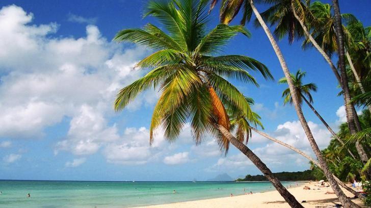 MARTINIQUE BEACH HD WALLPAPER Nature Pinterest 728x408
