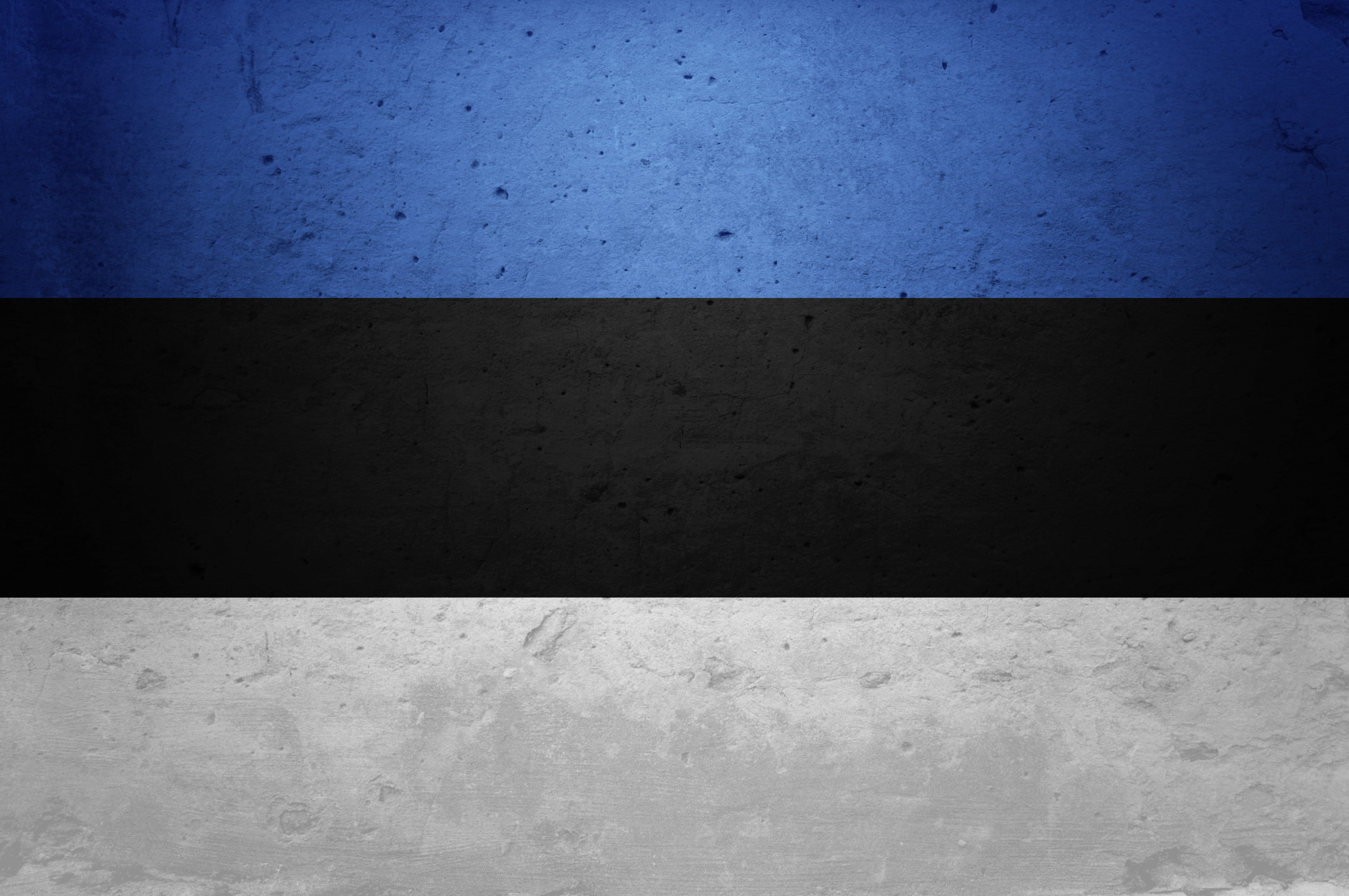 Flag Of Estonia HD Wallpaper Background Image 2560x1700 ID 2560x1700