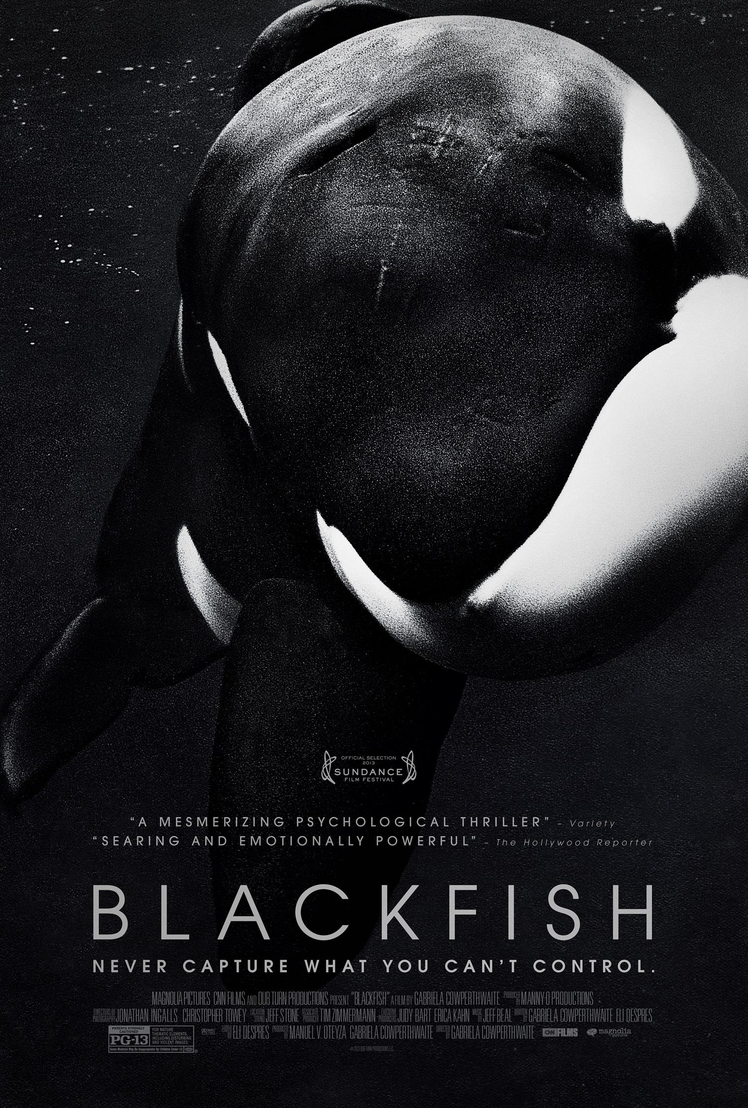 Gabriela Cowperthwaite Talks Blackfish   blackfilmcomread 1519x2250